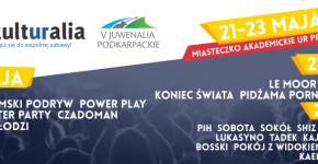 Kulturalia 2015 banner