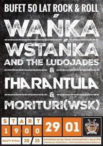 wanka_wstanka-tharantula-pod_palma