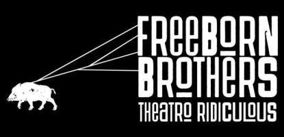 The Freeborn Brothers koncert_Rzeszow-m