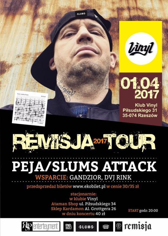 Rychu Peja. Koncert w Rzeszowie