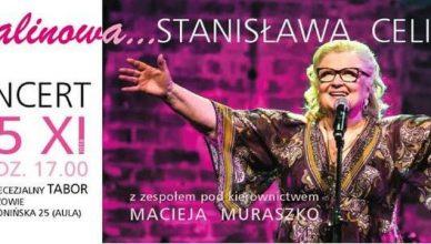 Stanisława Celińska, koncert w Rzeszowie