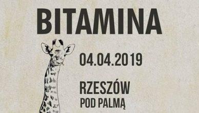 Bitamina | Pod Palmą