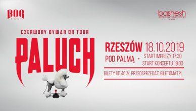 Paluch | Czerwony Dywan | Pod Palmą Rzeszów