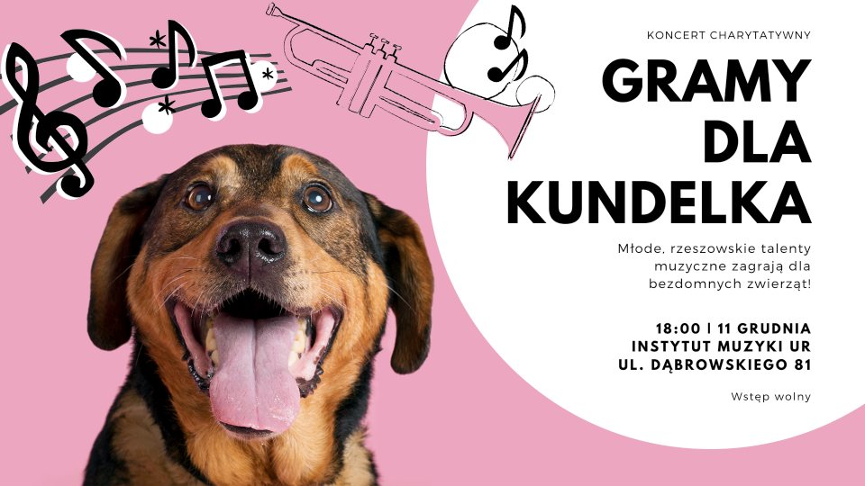 Koncert charytatywny dla Kundelka